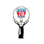70 de ani Steaua