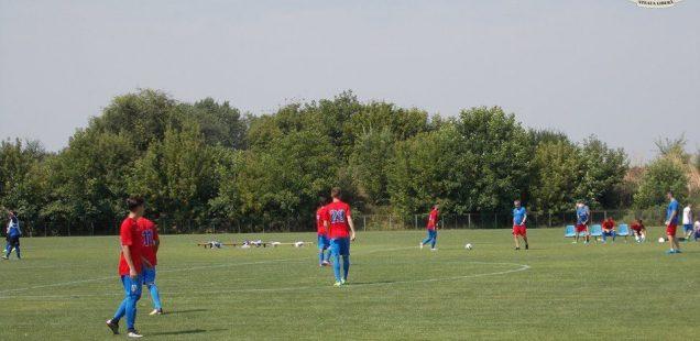 amical Steaua
