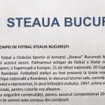 CSA Steaua Bucuresti palmaresul stelei